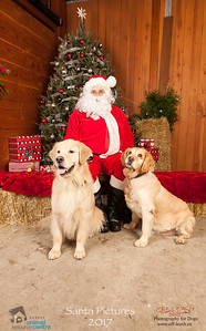 3522_SARC_OFF_LEASH_SANTA_2017