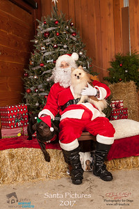 3489_SARC_OFF_LEASH_SANTA_2017