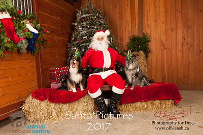 3495_SARC_OFF_LEASH_SANTA_2017