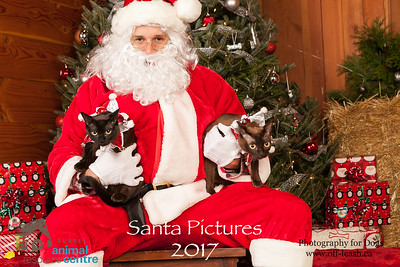 3505_SARC_OFF_LEASH_SANTA_2017