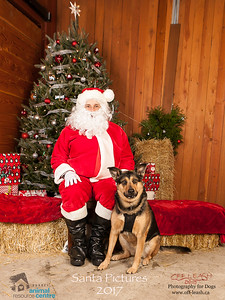 3538_SARC_OFF_LEASH_SANTA_2017