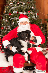 3477_SARC_OFF_LEASH_SANTA_2017