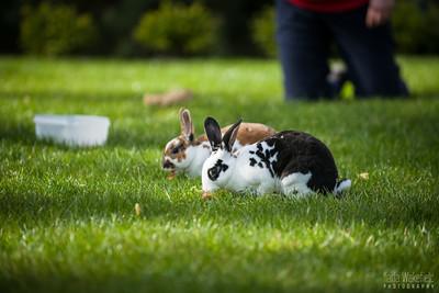 20150407-SARSBC-Bunny-Rescue-058