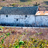 Carmel Farm