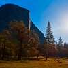 El Capitan Morning