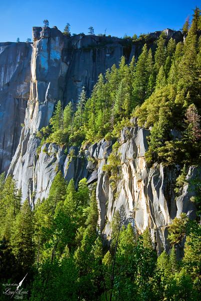 Yosemite Canyon Wall