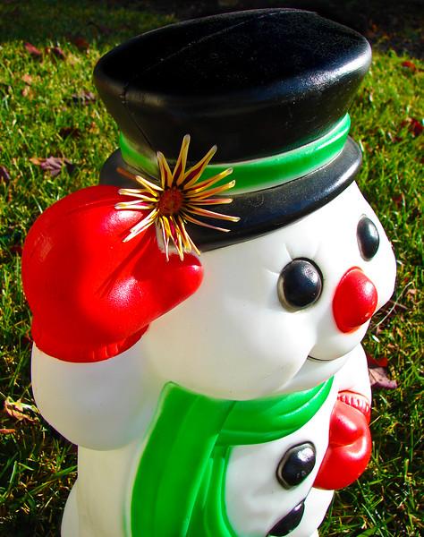 Owen's Snowman Flower