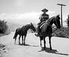 Chilean Horseback