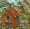 Peek-A-Boo II Jardine, 24x24 on canvas