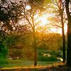 Auburn Pond