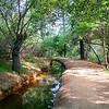 Auburn Creek