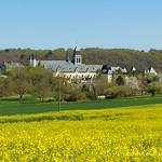 abbaye Royale de Fontevraud 1