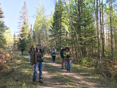 Waffles and Warblers field trip May 20 Whiteface River Sax-Zim Bog MN IMG_5085