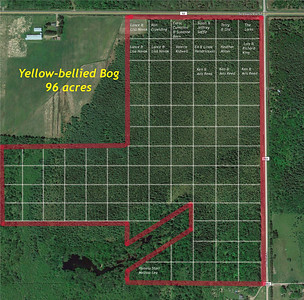 acres taken-Yellow-bellied Bog PERIMETER WITH ONE-ACRE DONOR BLOCKS