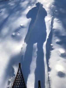 Snowshoeing at Yellow-bellied Bog Sax-Zim Bog MN IMG_0226