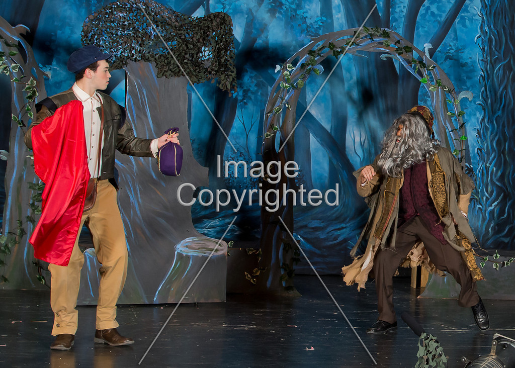 #476 - INTO WOODS  gdvh4959