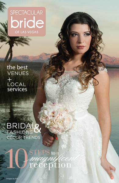 2014 Spectacular Bride Covers