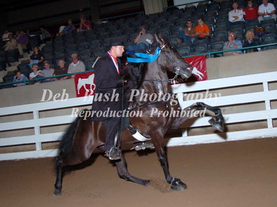 CLASS 18  AMATEUR OWNED AND TRAINED SPECIALTY