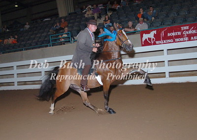 CLASS 20  PARK PERFORMANCE OPEN SPECIALTY