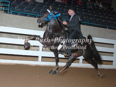 CLASS 25  AMATEUR 50 YRS & OLDER SPECIALTY