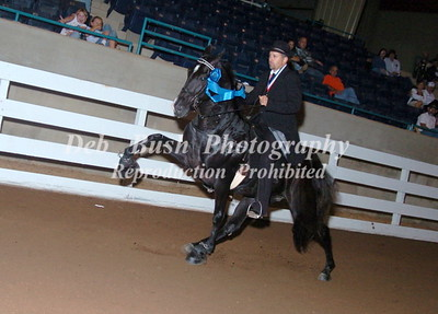 CLASS 48  FOUR YR OLD AMATEUR SPECIALTY