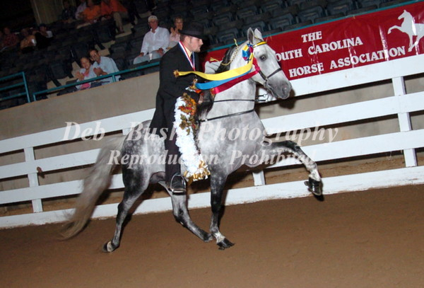 CLASS 55 PARK PLEASURE CHAMPIONSHIP SPECIALTY