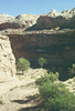Views into Horseshoe Canyon