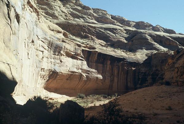 Views into Horseshoe Canyon