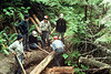 In Olympic National forest we had some sections of puncheon to build, but also two places where the trail needed cribbing to keep it from slumping into the creek.<br /> <br /> The girls in the group decided they'd like to do one of the cribbing sections, so they did all the work on this one.