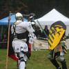Crown Tournament - October 2008 :