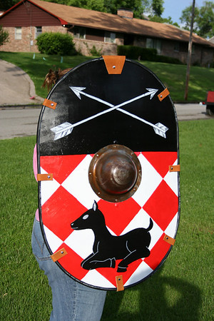 Custom Shields by Aiden