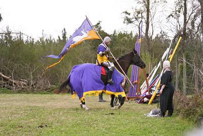 Jousting/Horseys