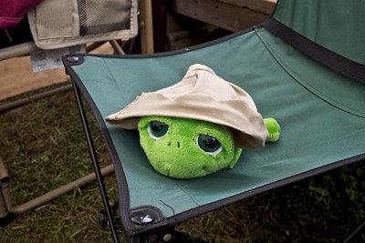Pennsic 42 turtle in a cut off hat
