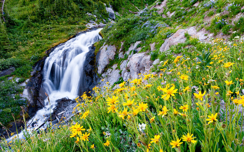 Waterfall surrounded by nice early summer flowers.<br /> <br /> Location: Heather Foothills, Mt. Hood Meadows ski area, Oregon<br /> <br /> Lens used: Canon 10-22mm f3.5-4.5