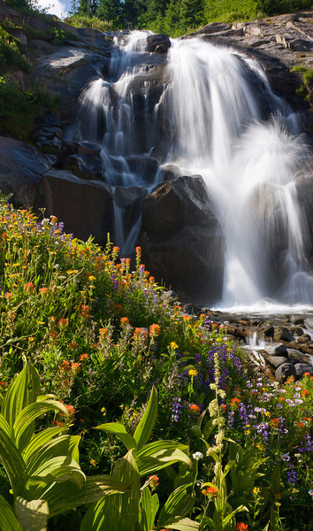 A robust spread of alpine wildflowers makes a nice, albeit angled foreground to a splashing waterfall.<br /> <br /> This is the first picture I've taken with my new (and absurdly expensive) Singh-Ray Vari-ND Duo filter that I felt has been worthy of posting.  Undoubtedly, there'll be lots more interesting shots utilizing it forthcoming, but to really figure out that particular filter may take me a little while - it's a beast with a learning curve.<br /> <br /> Location: Heather Foothills, Mt. Hood Meadows ski area, Oregon<br /> <br /> Lens used: 24-105mm f4.0 IS w/Vari-ND Duo filter