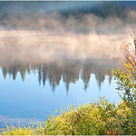 "Print title:  ""  MORNING MIST  ""  /  © Gj"