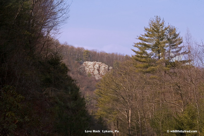 LOVE ROCK-- Lykens, Pa.
