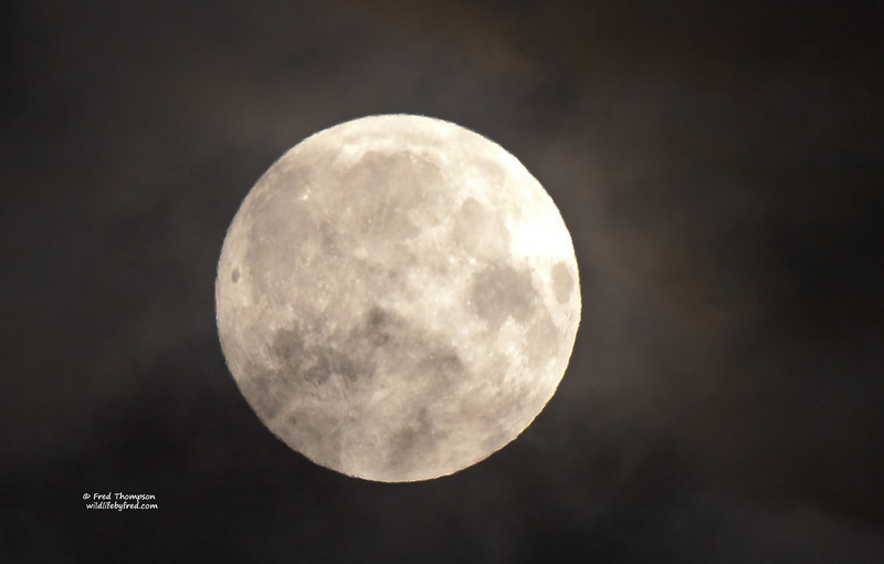 FULL MOON WITH THE CLOUDS ROLLING THROUGH IT