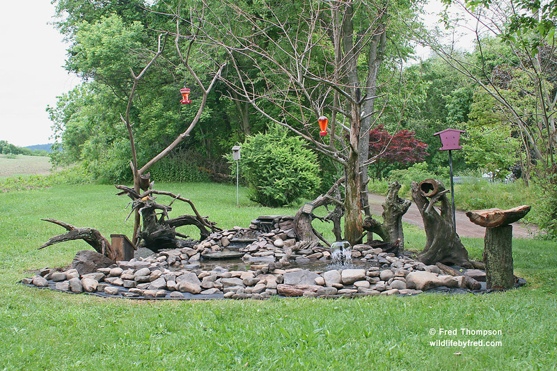 This is a updated photo of my new bird bath taken on 5/24/2013, it is getting closer to being finished and the birds love it. A special thank you to Dale Warner for all his help with this project.