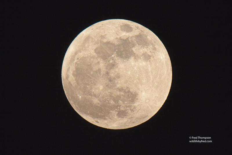 SUPER MOON OF MAY 5, 2012