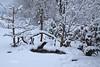 FEB 3, 2014 SNOW