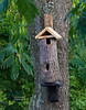 A FRIEND GAVE ME THIS HOLLOW TREE BRANCH AND I BUILT A BIRD HOUSE WITH IT, I HOPE SOMETHING CALLS IT HOME