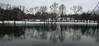 SPRINGDALE LAKE