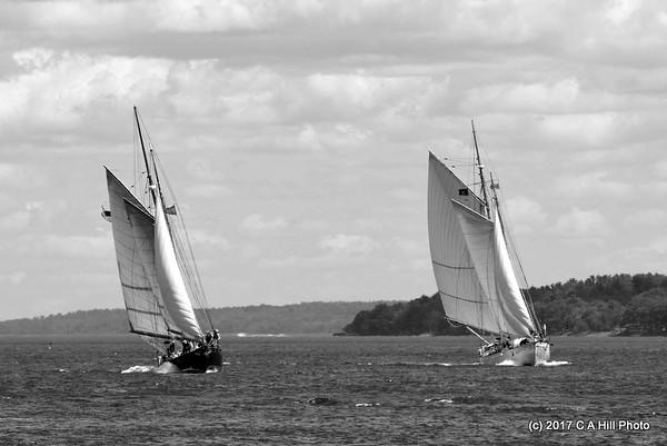 2017 Portland Harbor sail