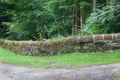 Dyke at Mount Stuart