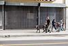 "LA Photowalk<br /> The ""BIG"" Dog"