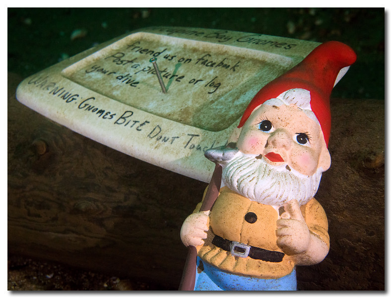 "<a href=""http://www.facebook.com/pages/Porcupine-Bay-Gnomes/221370557913151"">http://www.facebook.com/pages/Porcupine-Bay-Gnomes/221370557913151</a>"