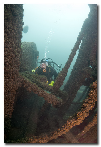 Selah Chamberlain - Lake Michigan, 85 ft. Deep     Lat. 43 46.196 N  Long. 87 39.401 W        Built: 1873 Sank: October 14, 1886<br /> <br /> In heavy fog, the Selah Chamberlain was struck on the port bow by the steamer, John Pridgeon Jr.and cut to the waterline. Five crew died when the lifeboat, Davits became fouled and the boat dumped into the lake. Others made it ashore in the other boat after a 3-hour pull through the fog.