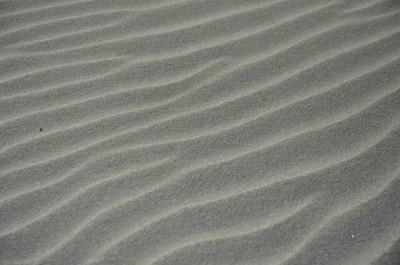 LCP-Beach-0957-T1NL0tsc