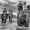 © Shiva Mandell